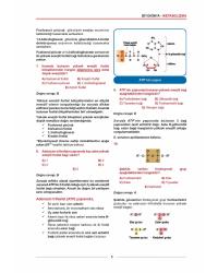 MEDİTUS SERİSİ - BİYOKİMYA SORULARI - 2.Baskı