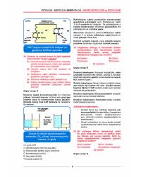 MEDİTUS SERİSİ - FİZYOLOJİ SORULARI - 2.Baskı