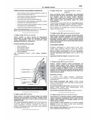 PRETUS DENEME SINAVLARI SERİSİ ( 9.Cilt )