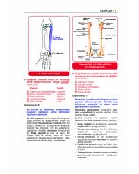 Prospektus TTS Anatomi ( 6.Baskı )