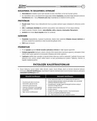 Tus Kampı Özel Notu - Patoloji ( 2021 )
