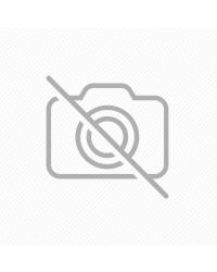 NETTER İNSAN ANATOMİ ATLASI ( 6.BASKI ) CUMHUR
